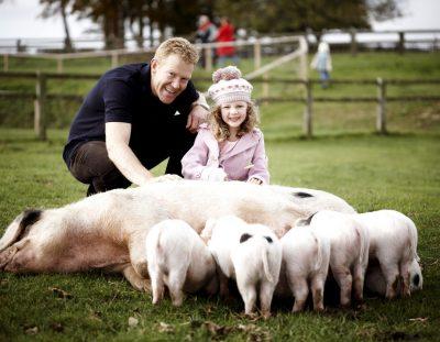 Cotswold Farm Parke