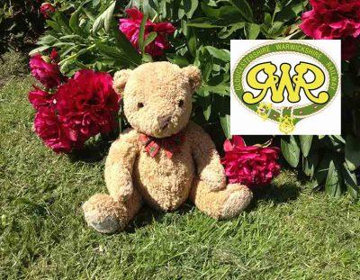 Teddy Bear Tuesday's